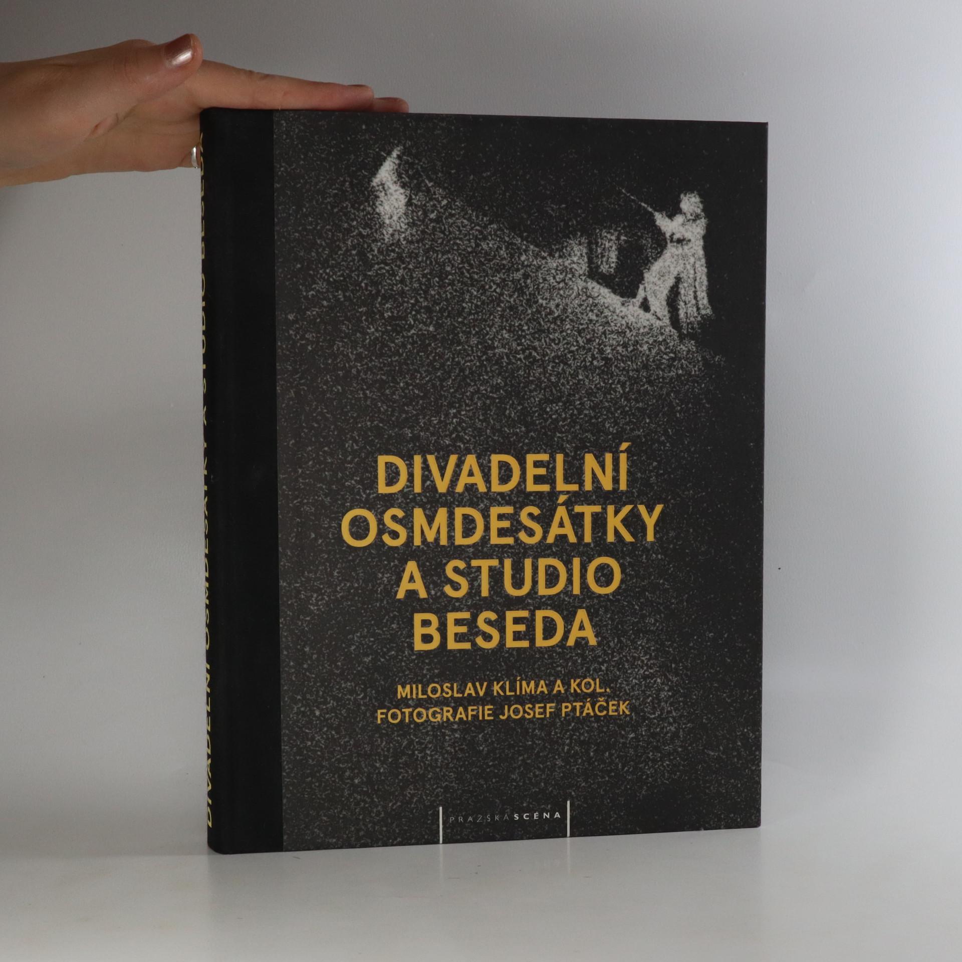 antikvární kniha Divadelní osmdesátky a Studio Beseda, 2014