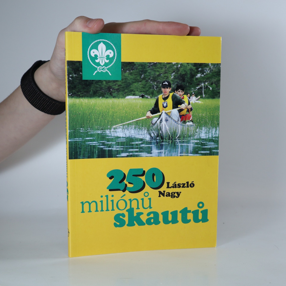 antikvární kniha 250 miliónů skautů, 1999