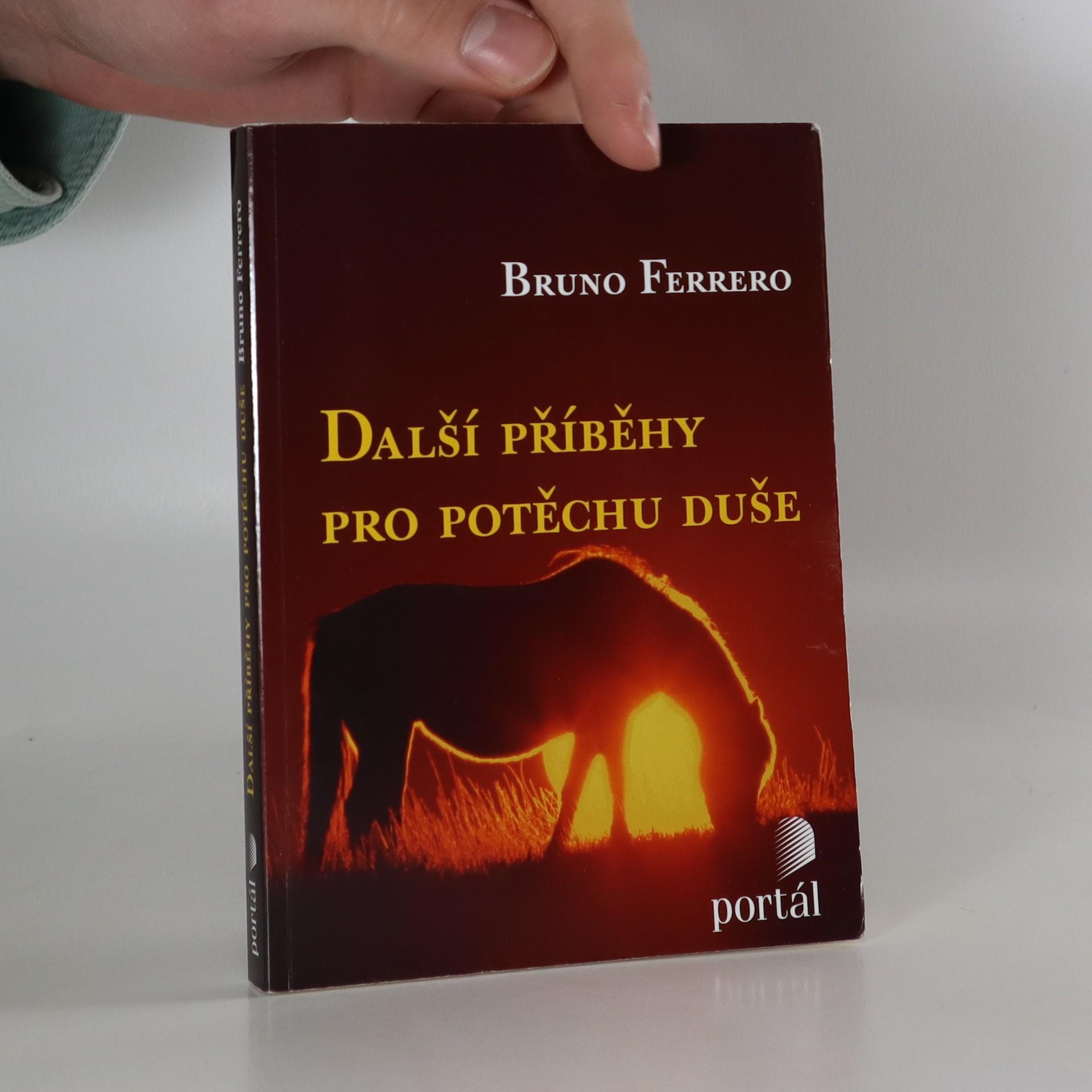 antikvární kniha Další příběhy pro potěchu duše, 2008