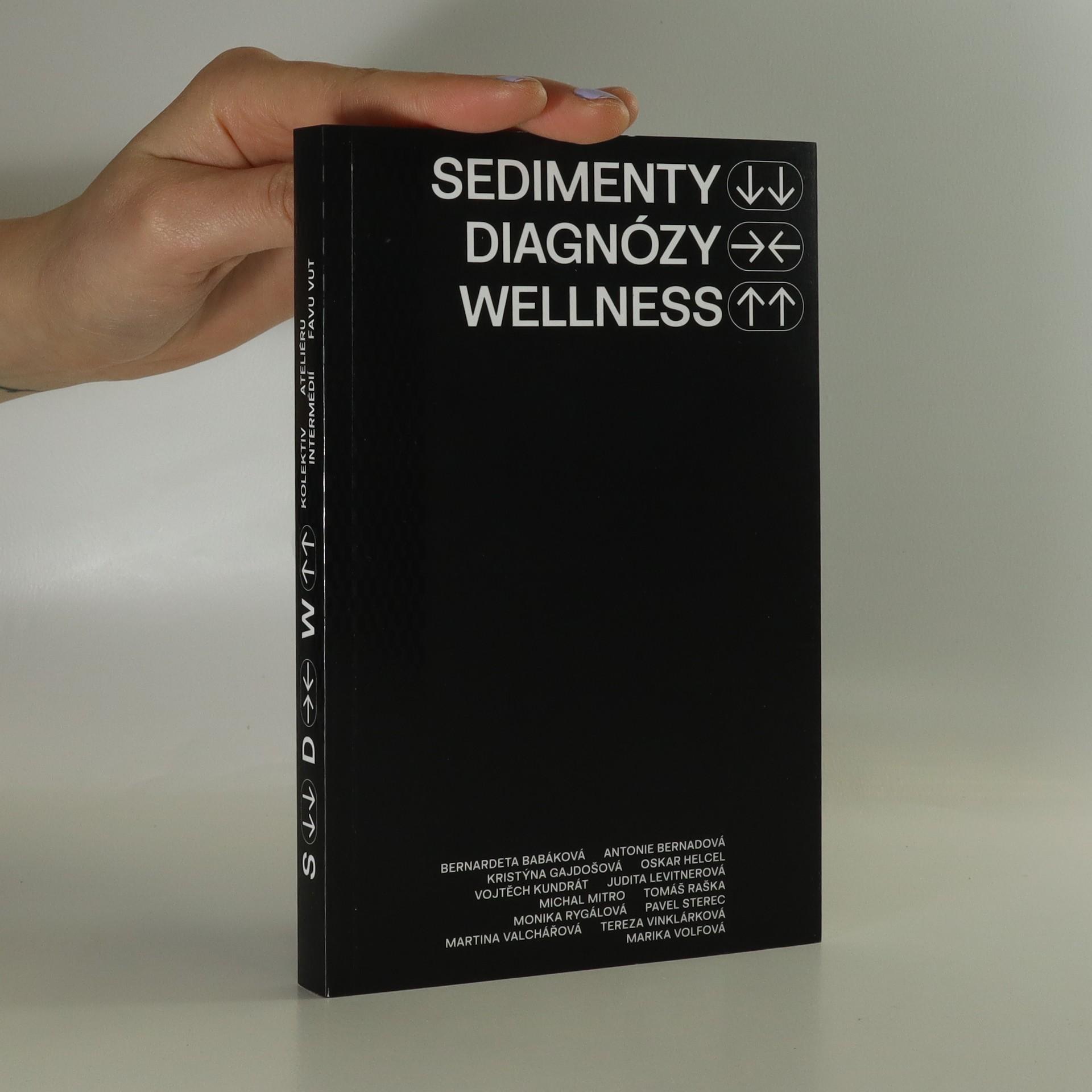 antikvární kniha Sedimenty, diagnózy, wellness, 2021