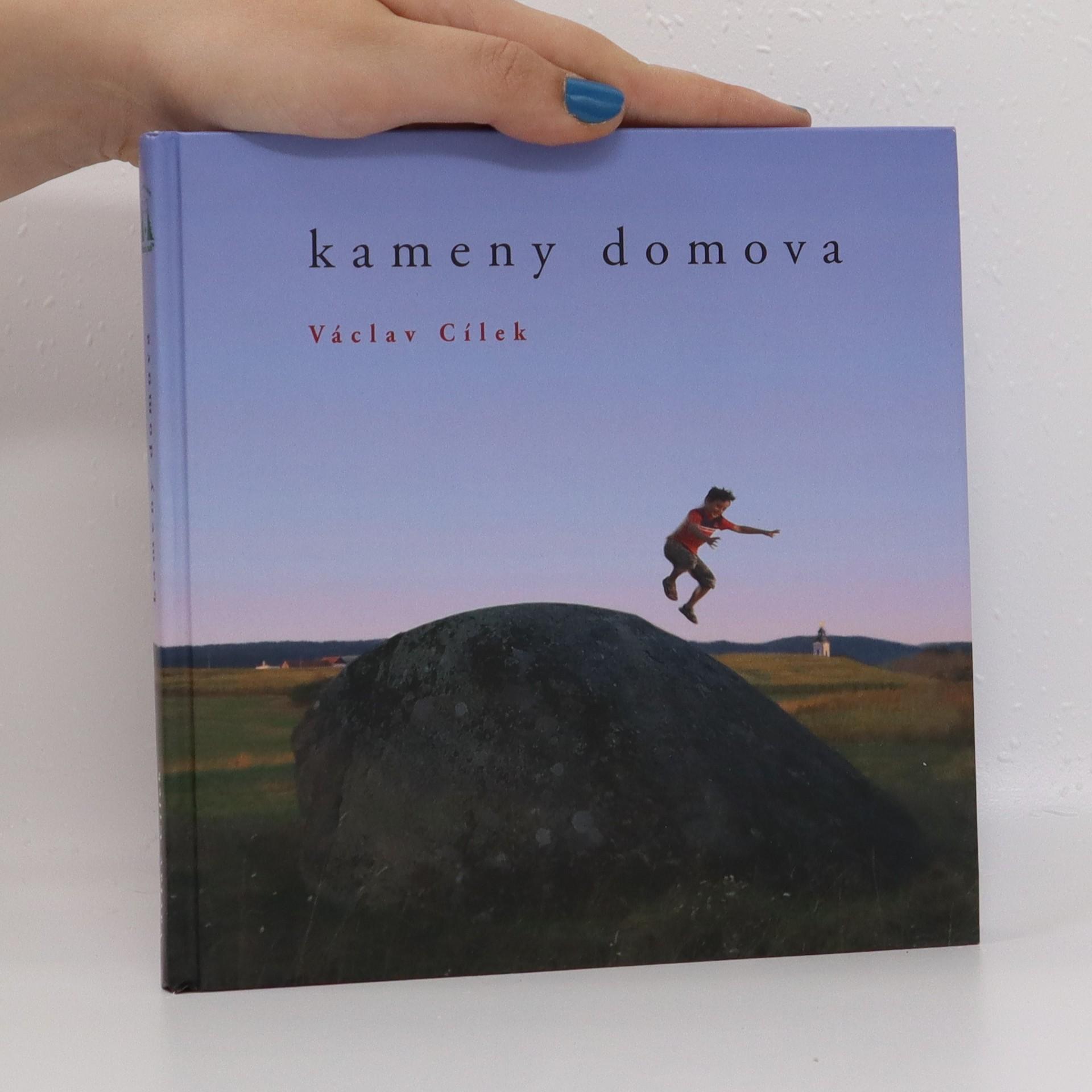 antikvární kniha Kameny domova, 2011