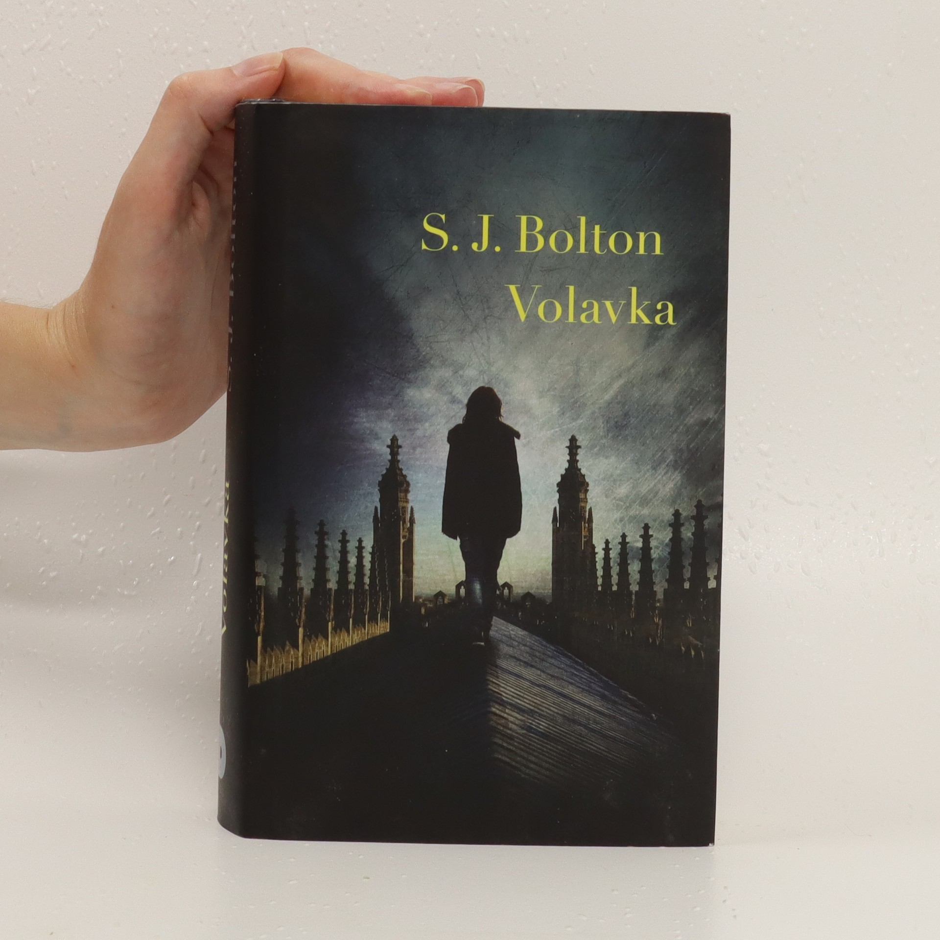 antikvární kniha Volavka, 2015