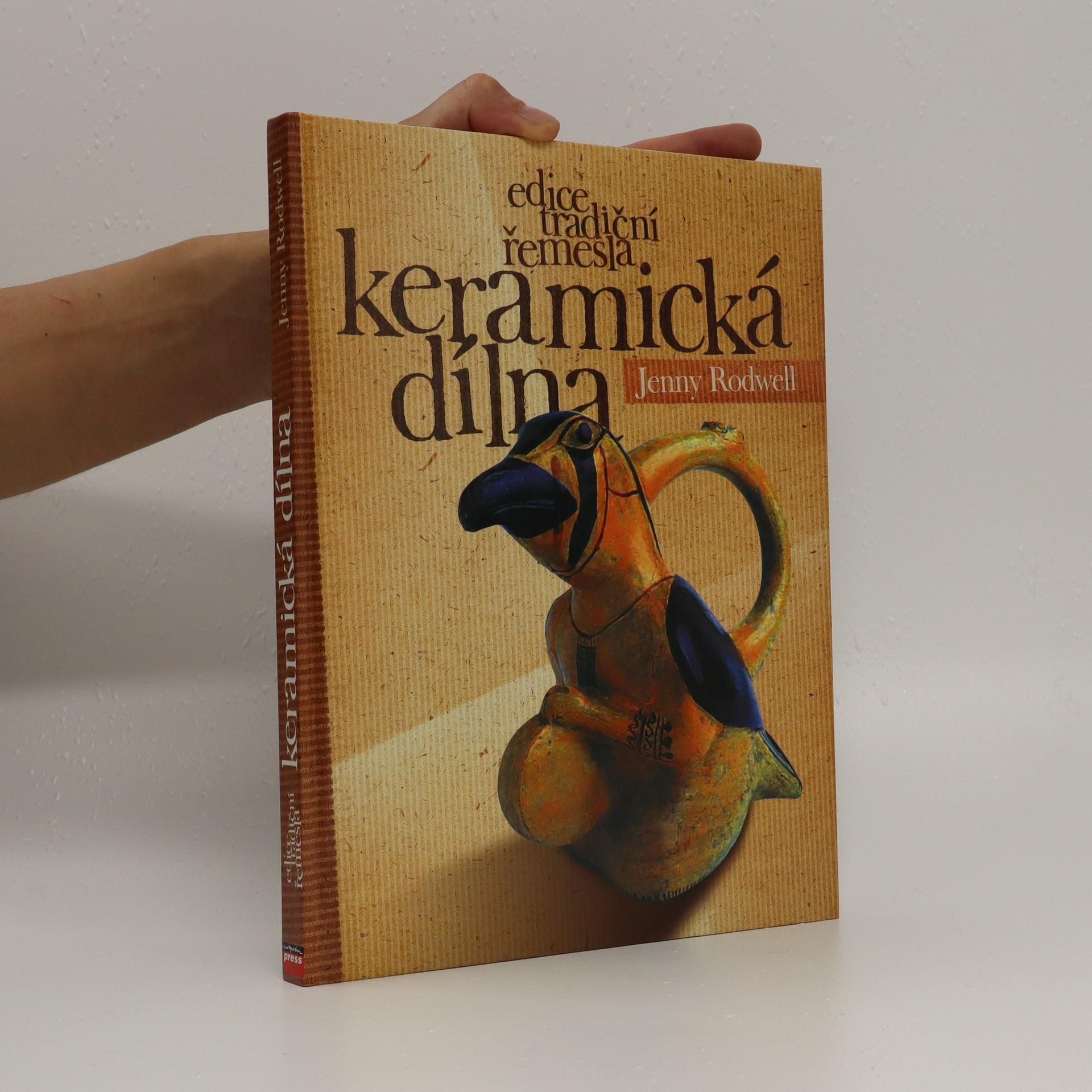 antikvární kniha Keramická dílna : 20 jedinečných keramických projektů pro malou domácí dílnu, 2003