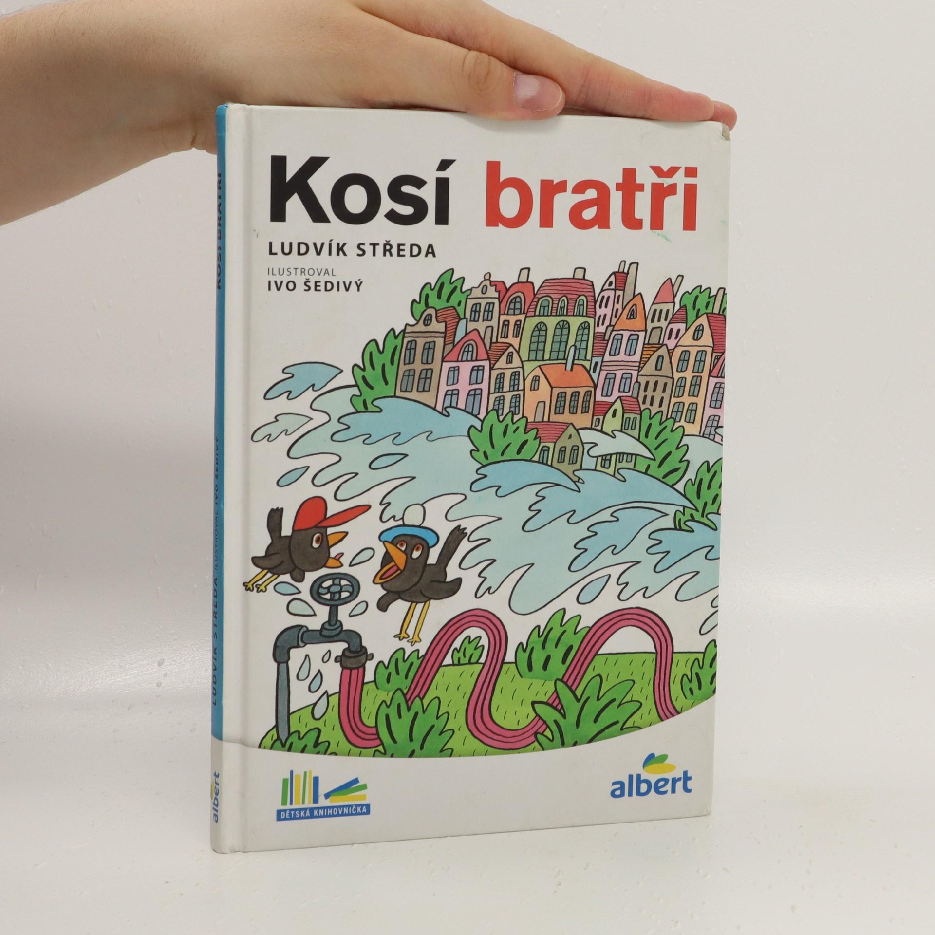 antikvární kniha Kosí bratři, 2015