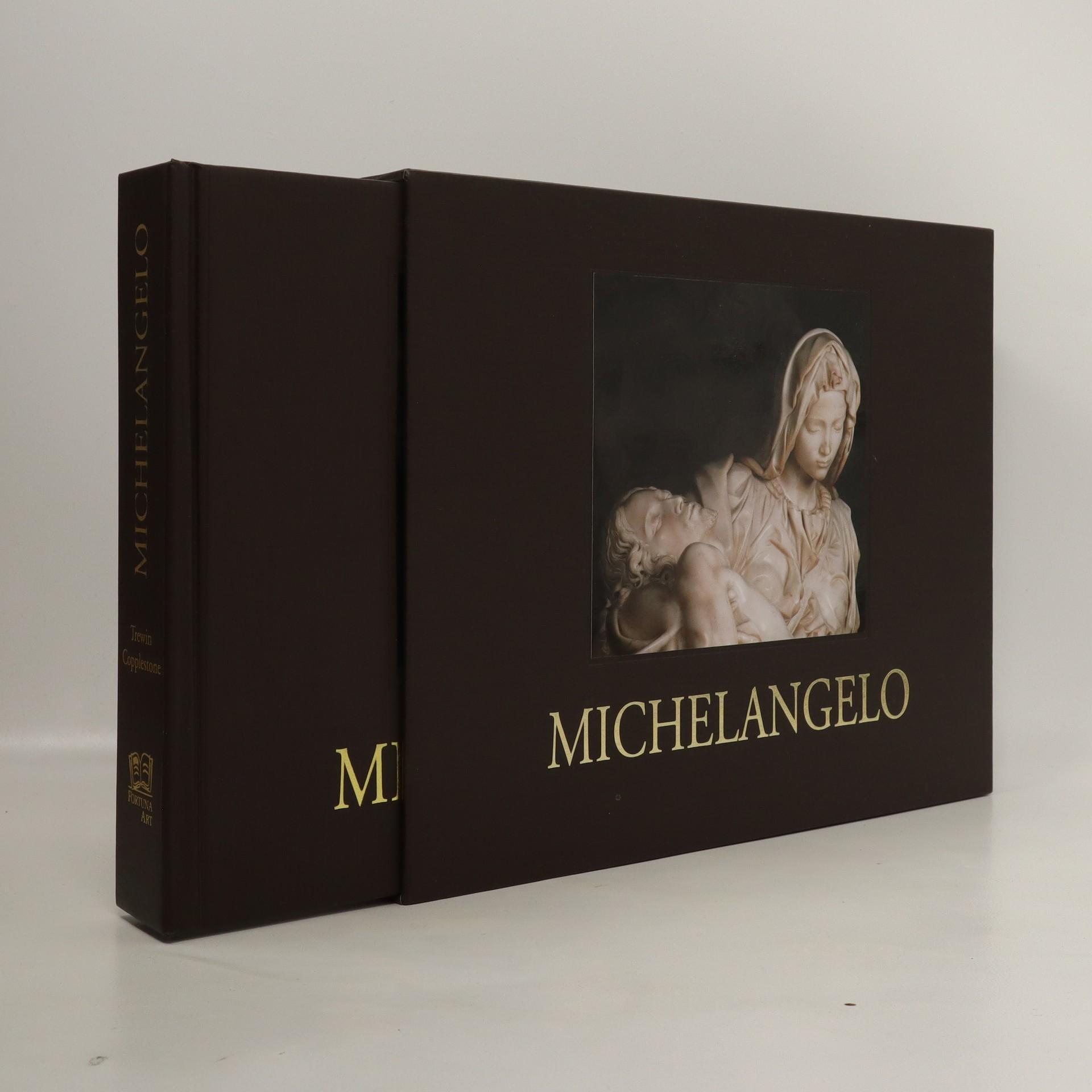 antikvární kniha Michelangelo, 2007