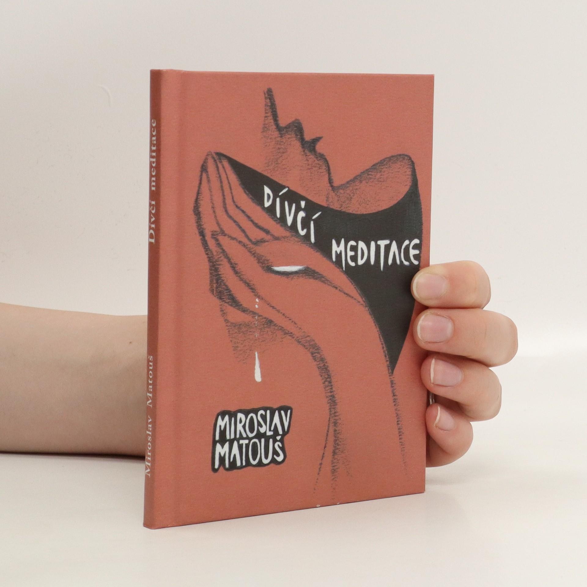 antikvární kniha Dívčí meditace nad bděním i snem, 2007