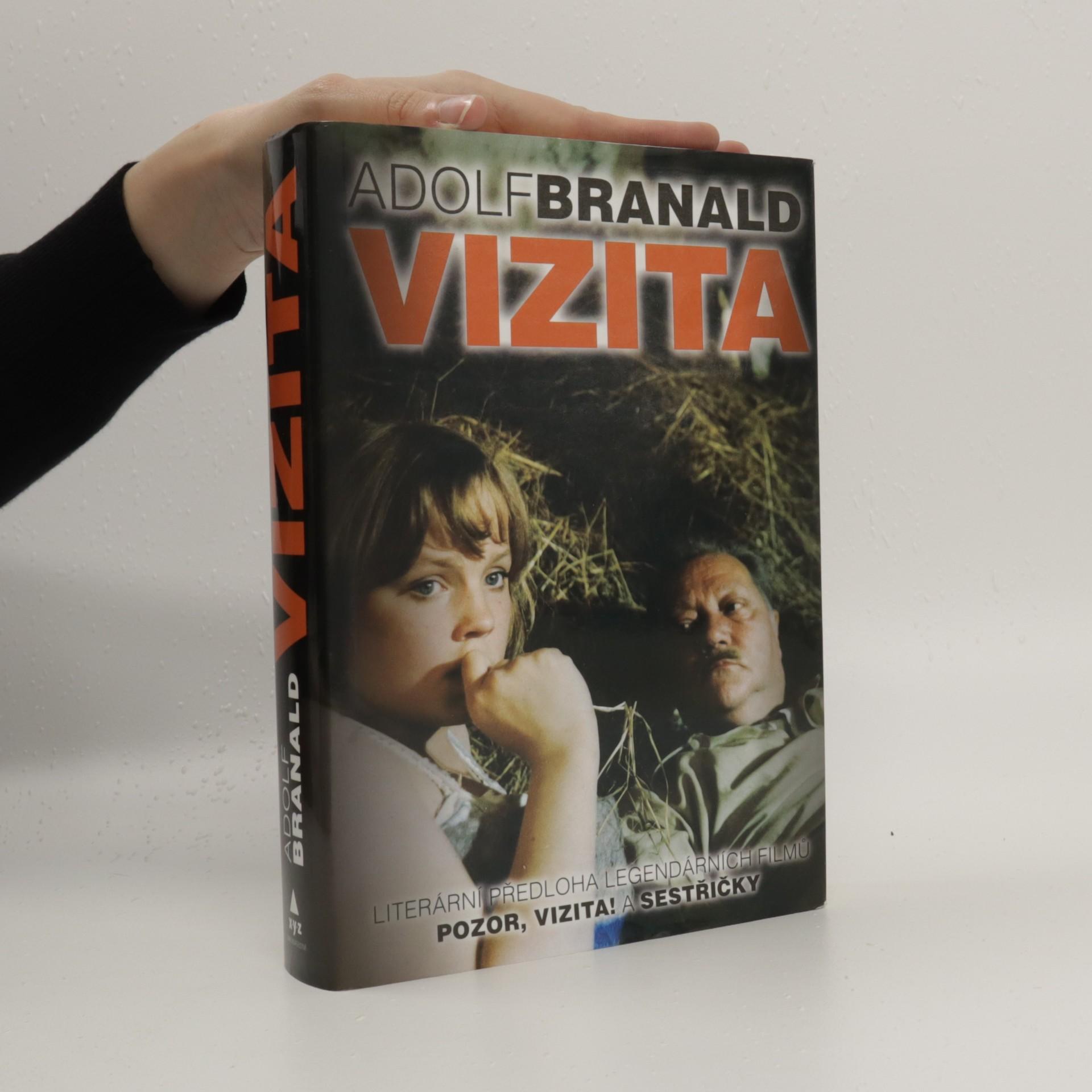 antikvární kniha Vizita, 2010