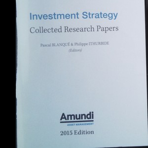 antikvární kniha Investment Strategy. Collected Research Papers, 2015