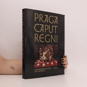 náhled knihy - Praga caput regni. Kunstdenkmäler in Prag und Umgebung