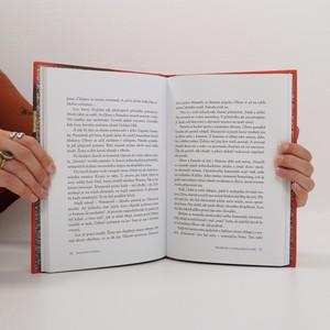 antikvární kniha Ukradený totem, 2013