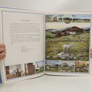 antikvární kniha Zvířata kolem nás, 1996