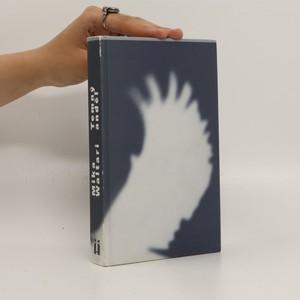 náhled knihy - Temný anděl