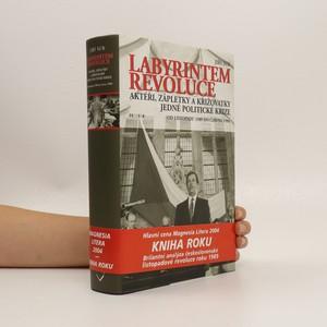 náhled knihy - Labyrintem revoluce. Aktéři, zápletky a křižovatky jedné politické krize (od listopadu 1989 do června 1990)