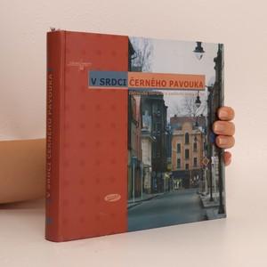 náhled knihy - V srdci Černého pavouka : ostravská literární umělecká scéna 90. let