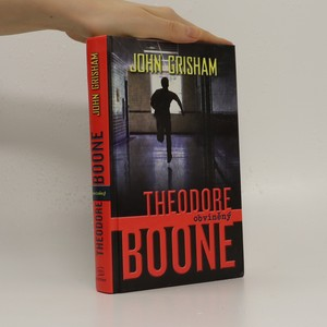 náhled knihy - Theodore Boone : obviněný