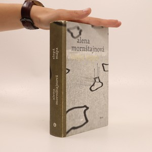 náhled knihy - Slepá mapa