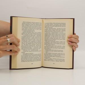 antikvární kniha Flámsky obraz (slovensky), 2001