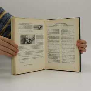 antikvární kniha Mezi Svratkou a Svitavou I.: brněnské pověsti a legendy, 2005