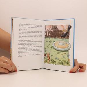 antikvární kniha Ferda cvičí mraveniště, 2006