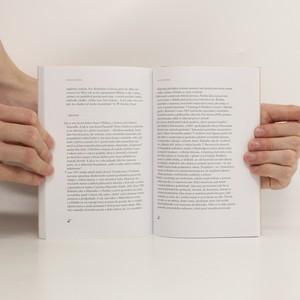antikvární kniha Kritika porozuměním, 2011