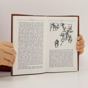 antikvární kniha Divá Bára a jiné povídky, 1997