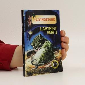náhled knihy - Labyrint smrti