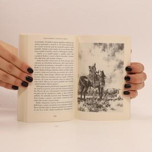 antikvární kniha Země bez zákona, 2014