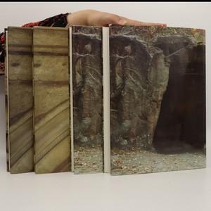 antikvární kniha Dějiny českého výtvarného umění. I. a II. díl. (2 díly ve 4 svazcích), 1984, 1989