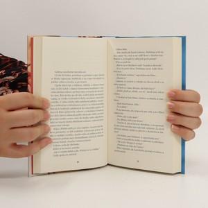 antikvární kniha Zmizení perníkové princezny, 2020