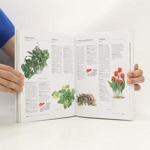 antikvární kniha Jak pěstovat pokojové rostliny, 2002