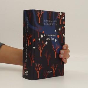 náhled knihy - Co neodvál ani čas