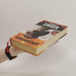 antikvární kniha Kamenný déšť, 2013