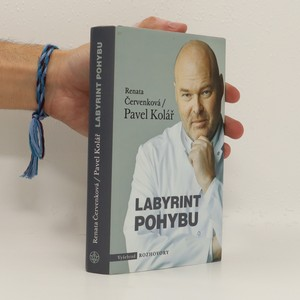 náhled knihy - Labyrint pohybu