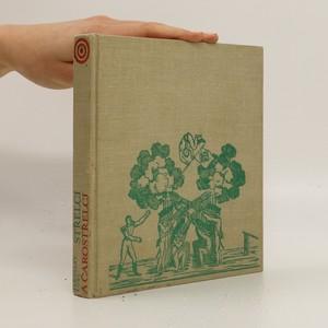 náhled knihy - Střelci a čarostřelci