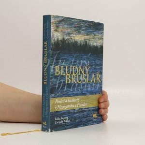 náhled knihy - Bludný bruslař : pověsti a báchorky z Nizozemska a Flander